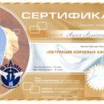сертификат шелест фото 8