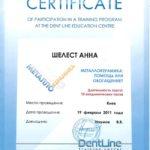 сертификат шелест фото 3