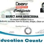 сертификат шелест фото 2