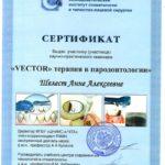 сертификат Шелест Вектор
